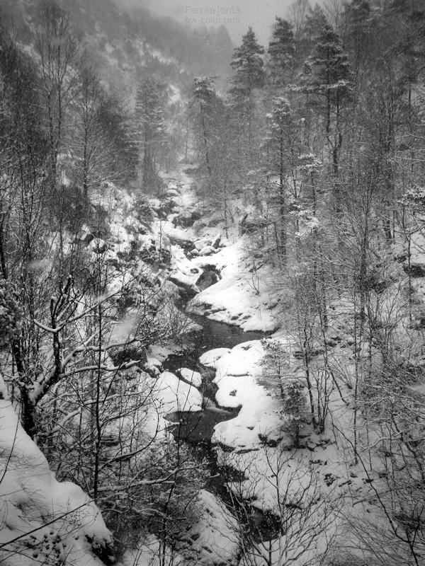 El riu Freser, hivern.