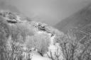 Un altre paisatge d'un hivern nevat / another winter landscape